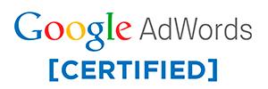 Partner Google - Microsgandia