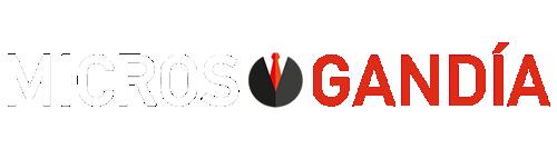 agencia-seo-microsgandia_logo_