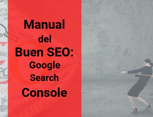 Manual del buen SEO: Google Search Console